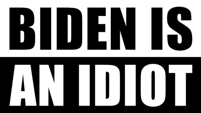 Biden Is an Idiot Sticker